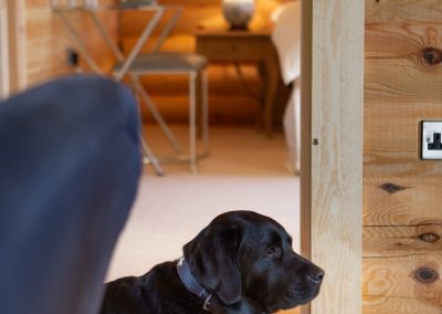 Dog Friendly Foxton Locks Lodges
